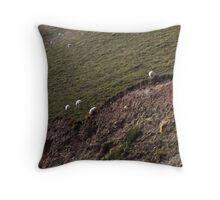Sheep on the hillsides, Ireland Throw Pillow