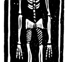 Late Medieval Woodcut of Skeleton in Coffin Sticker