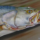Colors Of A Trout by Phyllis Beiser