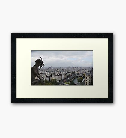 View from the top of Notre Dame Framed Print