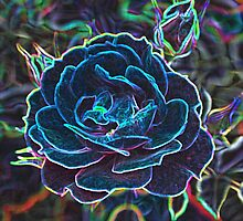 Swirly Blue Neon Rose by stine1