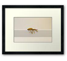 Pulpardo Framed Print
