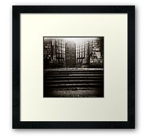 { luminosity } Framed Print