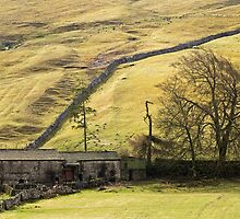Dales Barn Littondale by Nick Jenkins
