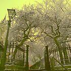 Snowy Steps, Norwich, England by Joanna Rice