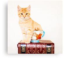 Yoyo - Teacup Series Canvas Print