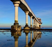 Bembridge Lifeboat Station by Sterling Creations Photography