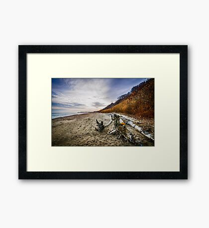 Beach at Scarborough Bluffs Framed Print