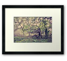 I Know You're Lonely Framed Print