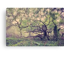 I Know You're Lonely Canvas Print