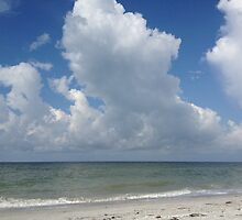 Sanibel Clouds by Rosie Brown