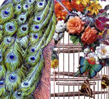 Vintage Peacock Beauty Sticker