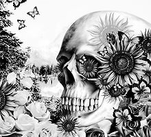 Reflection. Skull landscape by KristyPatterson
