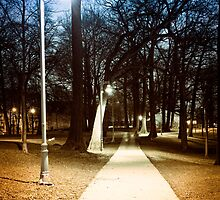 Park path at night by Elena Elisseeva