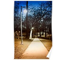 Park path at night Poster