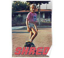 Skate Shred Poster