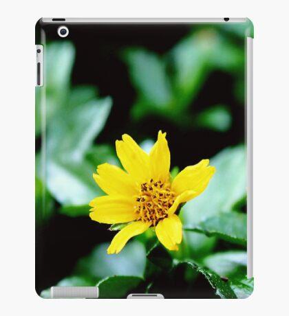 Two stunning & amazing yellow flower ;) iPad Case/Skin