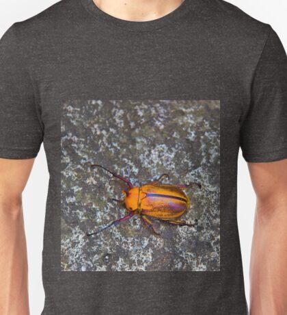 Meet The Beetle From Biblian - Ecuador Unisex T-Shirt