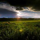 Summer Rains by soyrwoo