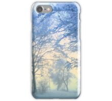 Wonderful Winter Morning iPhone Case/Skin