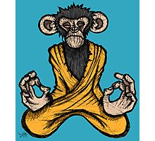 Zen Monkey Photographic Print