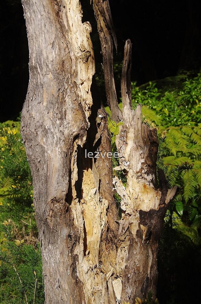 Tree trunk by lezvee