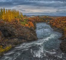 Autumn in Egilsstadir by Peter Hammer