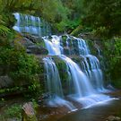 Liffey Falls .. side portrait by Michael Matthews