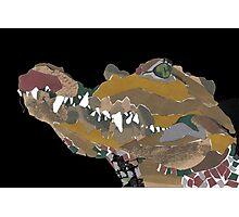collage crocodile Photographic Print