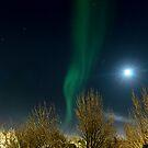 Auroras by Ólafur Már Sigurðsson