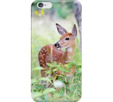 Once upon a Fawn - White Tailed Deer Fawn iPhone Case/Skin