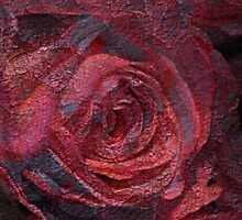 Rose Indigo Abstract 4 by MQ20