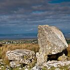 King Arthur's Stone Gower by Nick Jenkins
