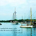 Psalm 107:29 He maketh the storm a calm by Susan Savad