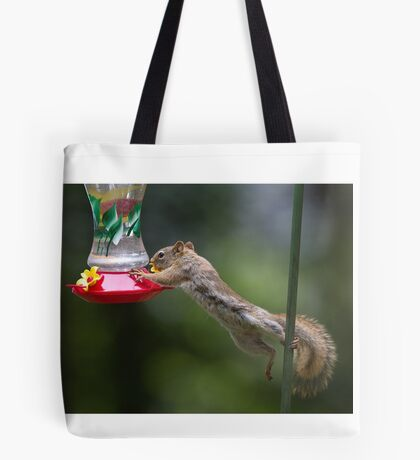 Feet don't fail me now! Red Squirrel Tote Bag