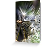 Dandelion Core Greeting Card