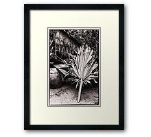 Cambodian Palm Leaves Cover Framed Print