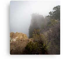 The Rare Grand Canyon covered with puffy fog Metal Print