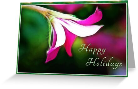 Happy Holidays! by Anita Pollak