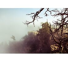 Grand Canyon Knight Photographic Print
