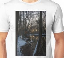 cold Sunset spot Unisex T-Shirt