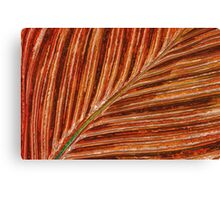Abstract Canna Leaf Canvas Print