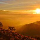 Magical Mauna Kea Sunset by Randy Richards