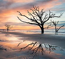 Charleston South Carolina Tree in the Surf Reflection by MarkVanDyke