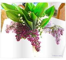 Four kinds of lilacs Poster