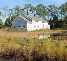 High Tide in the Marsh by Hope Ledebur