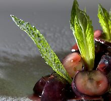 Blueberry ragout with almond tartlet h by Stefan Bau