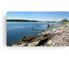 Shores of Kettle Lake Metal Print