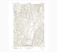 USGS Topo Map  Vermont VT Benson 460003 1948 24000 One Piece - Short Sleeve