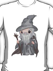 Gandalf T-Shirt